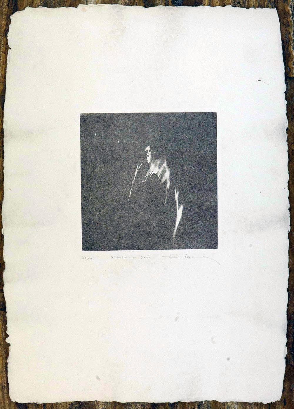 Prueba en gris, 1978