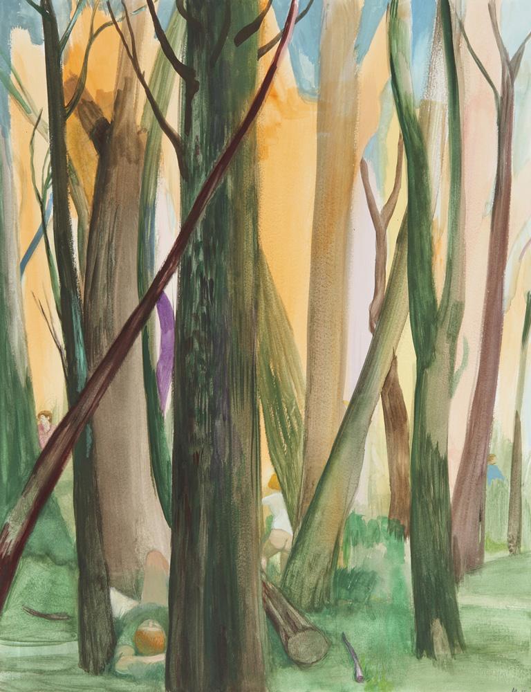 Bosque toscano 65x50