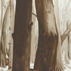 Gran Bosque II 65x50