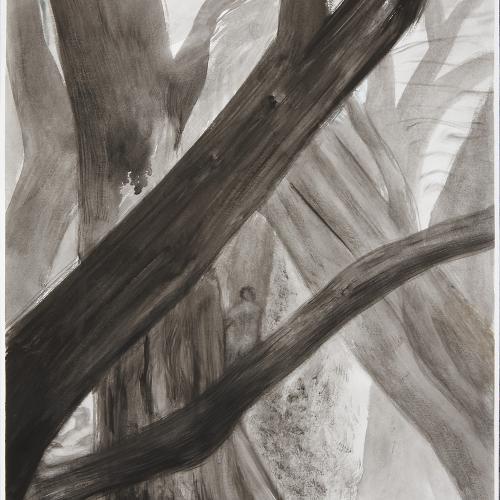 Bosque en negro I 65x50