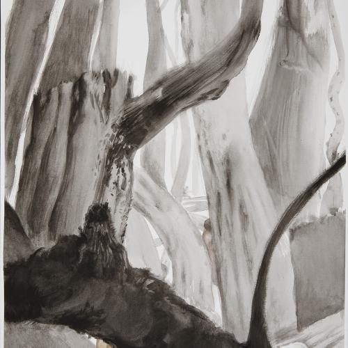 Bosque en negro II 65x50