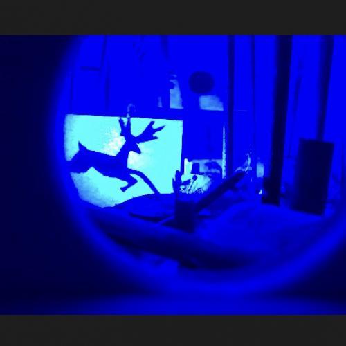 Homenaje a Duchamp. Eros Teatro. 2019. Detalle interior de una de las cajas. Bosque con ciervo.