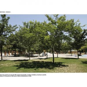 """proyecto """"La Estrategia del Avestruz"""" (2007-12); S/T (42.01.05 N – 4.32.25 O); 90x120 cms (mancha: 72x92 cms) ; 2008."""