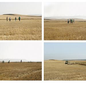 """proyecto """"La Estrategia del Avestruz"""" (2007-12); S/T (Santoyo, Palencia), 6 fotografías de 73x100 cms; instalación: 146x400 cms."""