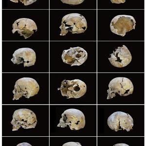 """proyecto """"La Estrategia del Avestruz"""" (2007-12); S/T, 18 fotografías de 24x30 cms/u.; instalación: 144x90 cms."""