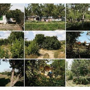"""proyecto """"Terra"""" (2004-09); S/T; 15 fotografías de 42x57 cms/u., instalación: 130x287 cms (2007-08)."""