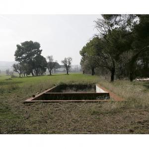 """proyecto """"Terra"""" (2004-09); S/T; 93x124 cms, 2008."""