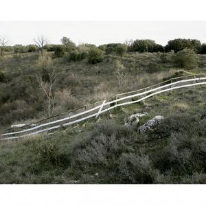 """proyecto """"Terra"""" (2004-09); S/T; 93x124 cms, 2007"""