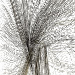 Imagen digital, 99 x 70 cm, 2009