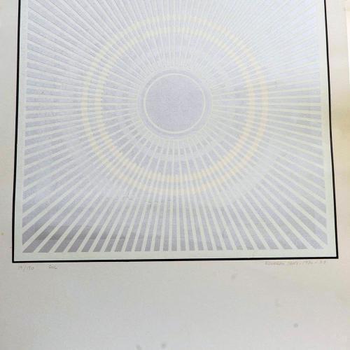 Sol, 1970-1978¨
