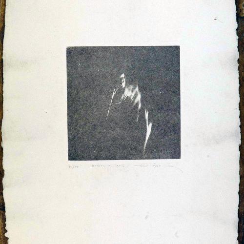 Prueba en gris, 1978¨