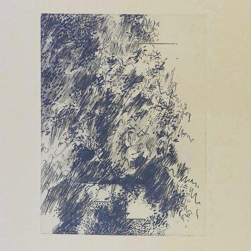 Jardín I - esto 4, 1978¨